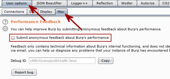 Burp Suite Tips - Privacy Settings - Performance Feedback